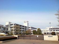 鈴木奈々 学歴